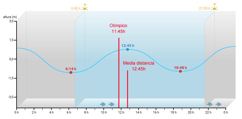 triatlon bilbao the swimet 3