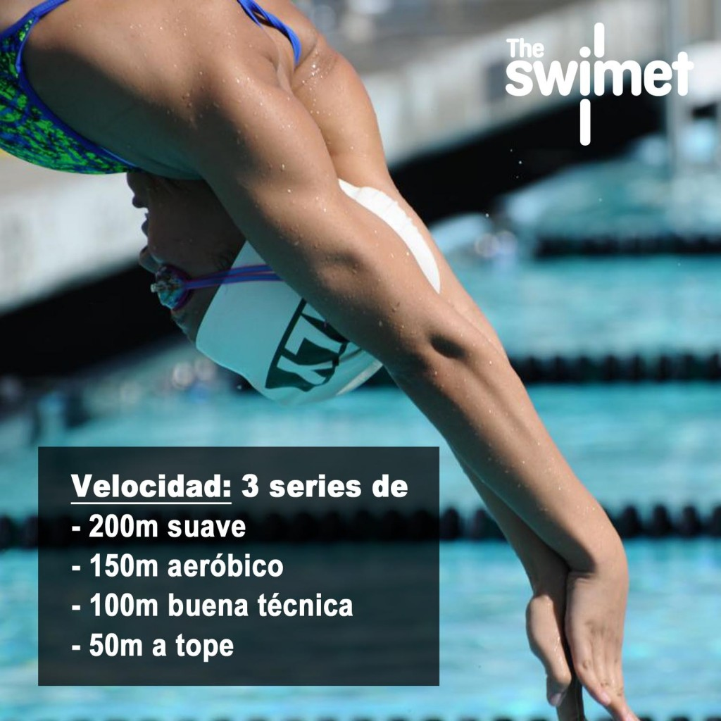 swim training 3 the swimet